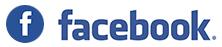 GEM elettronica Facebook social